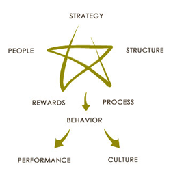 jay galbraith s star model Jay galbraith's star model of organizational design is a well-known and widely  implemented concept in both the public and private sectors.